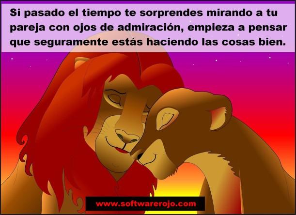 Rey león1