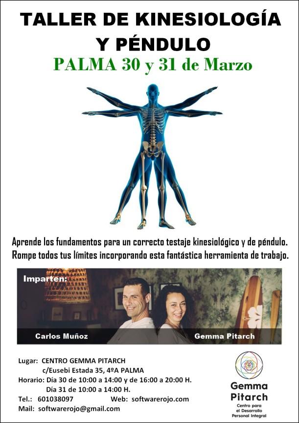 cartel palma1 testaje marzo 2019